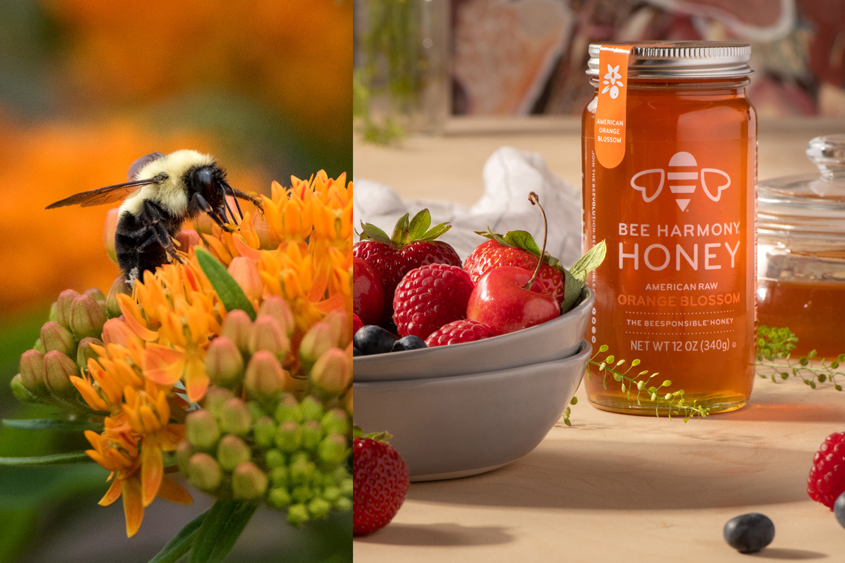 Bee Harmony Products Shoot #1
